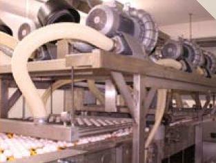 Egg Drying
